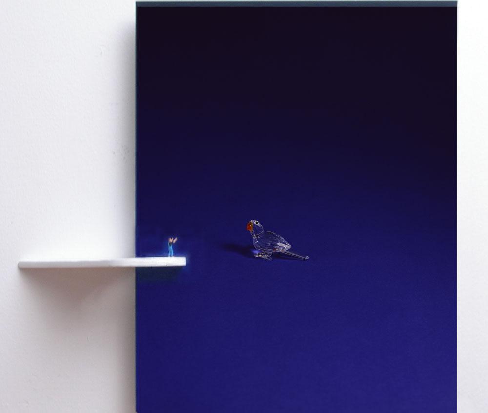 """Situation with Blue Bird"" 2005, tecnica mista, 46 x 48 x 9 cm"
