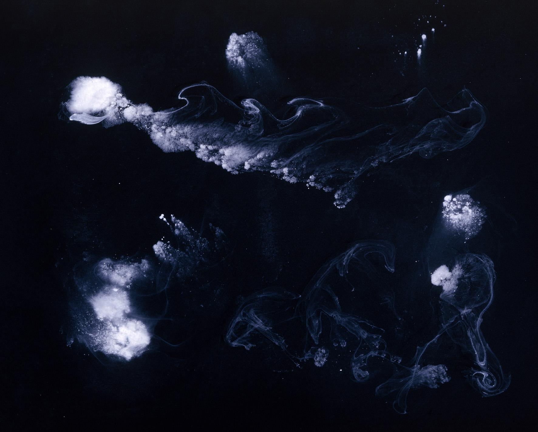 IN MOSTRA Senza Titolo XVIII, 2008 stampa cromogenica su diasec