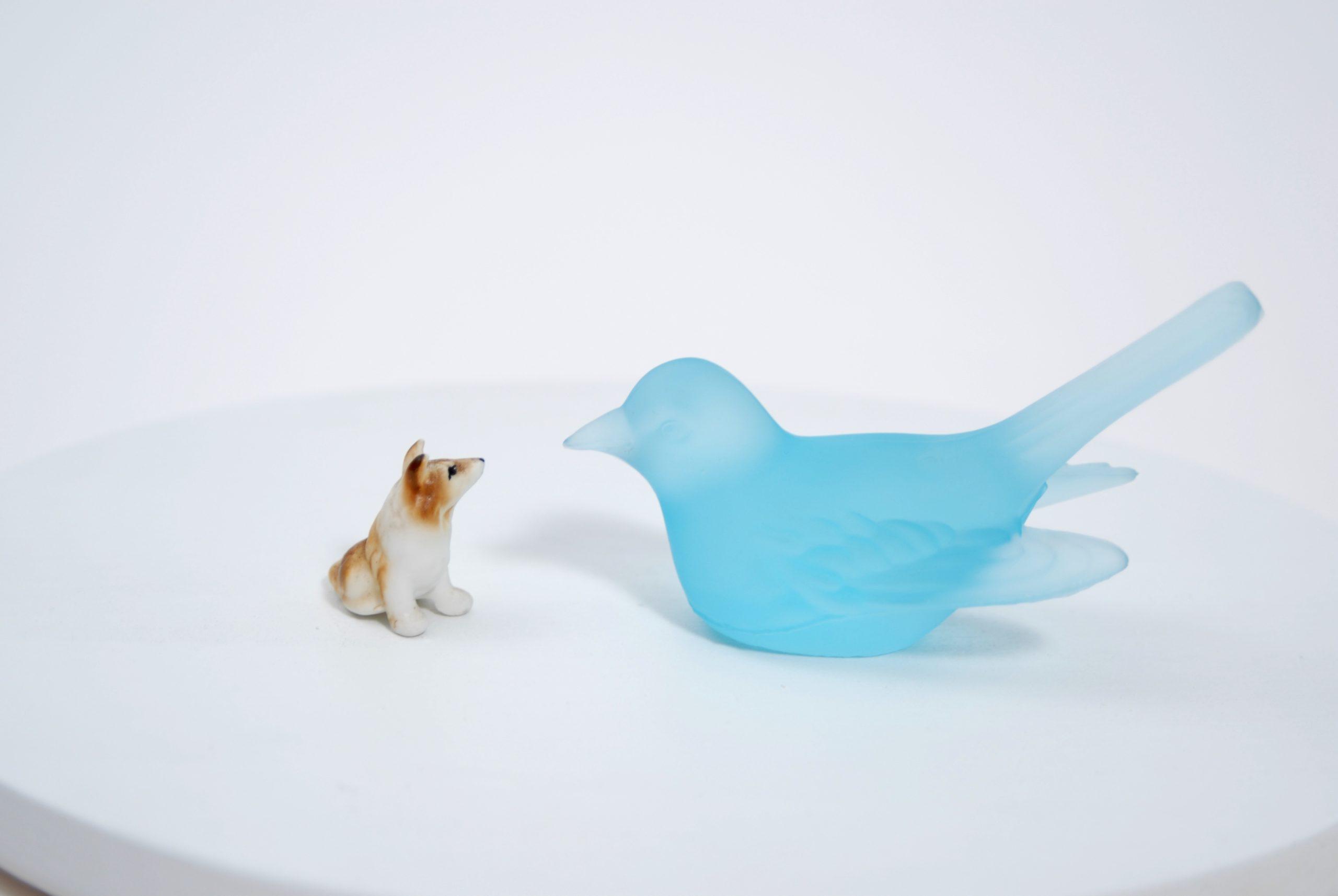 """Dialogue (with blue bird)"" 2007, tecnica mista"