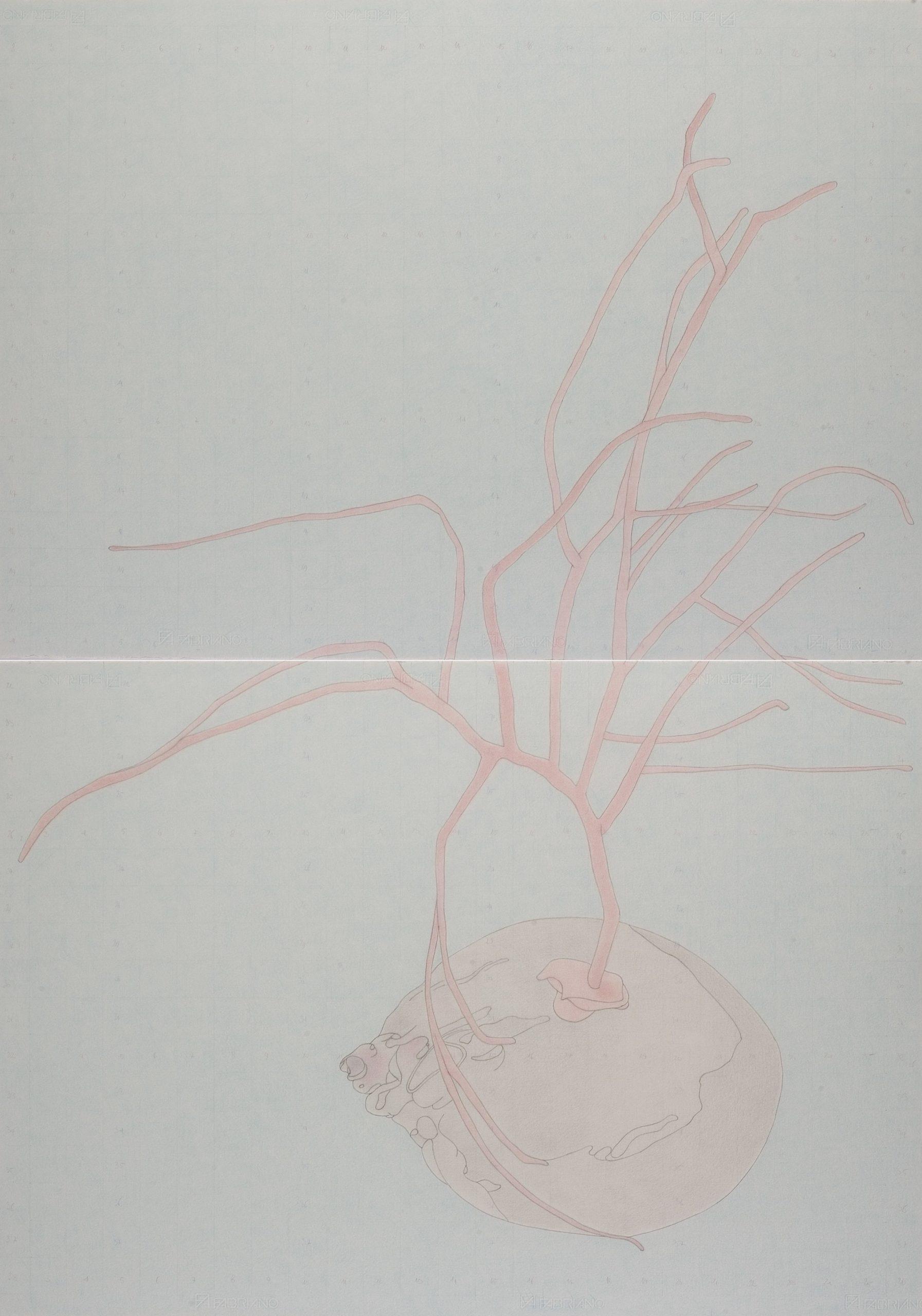 """""""Il porto di Santo Spirito"""" 2008, matita su carta, 100 x 140 cm"""