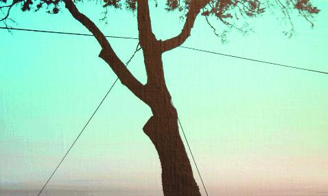 """Viale Dohrn"" 2003, olio su tela"