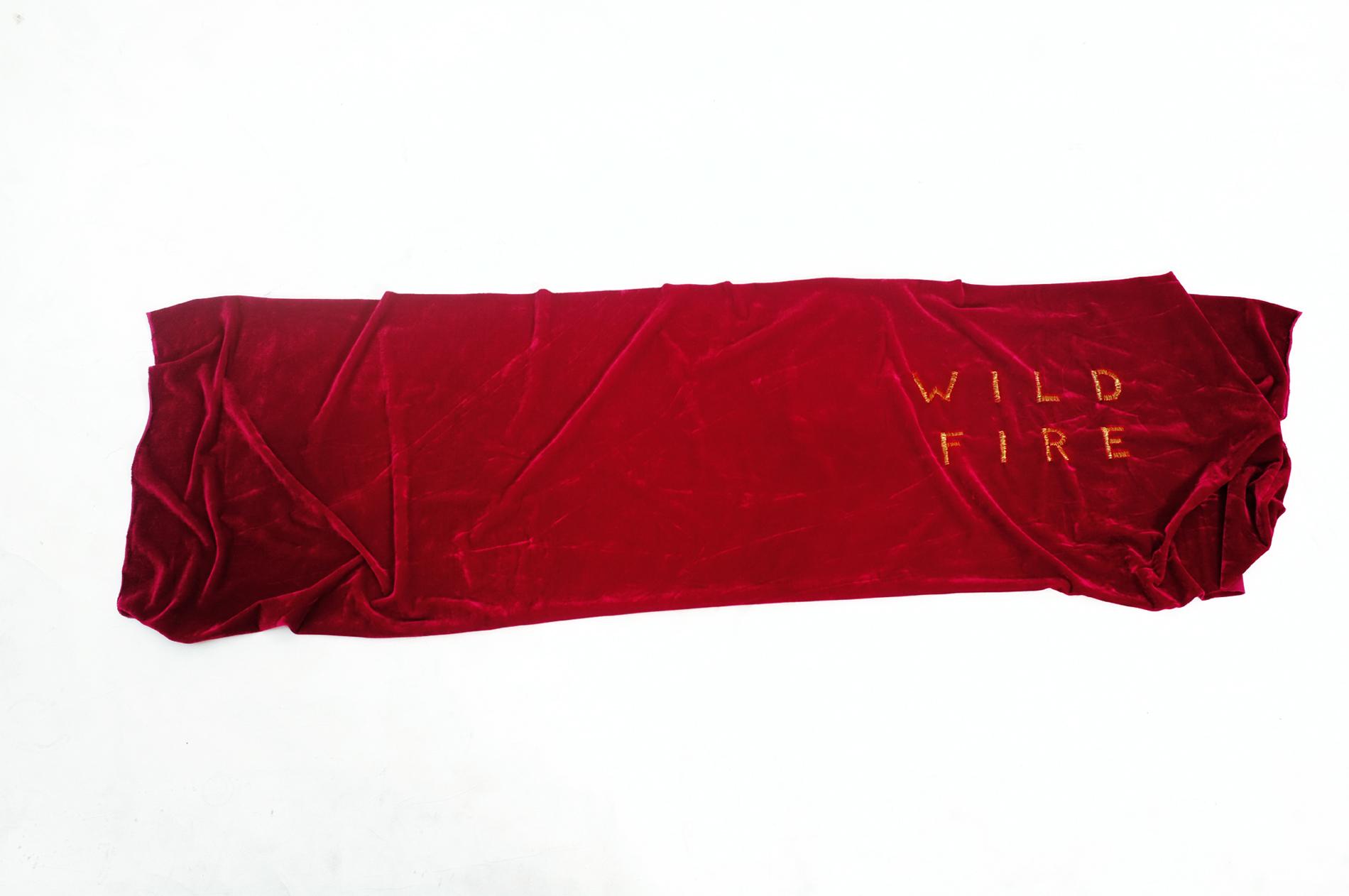 """""""Fire"""" 2013, ricamo su velluto"""