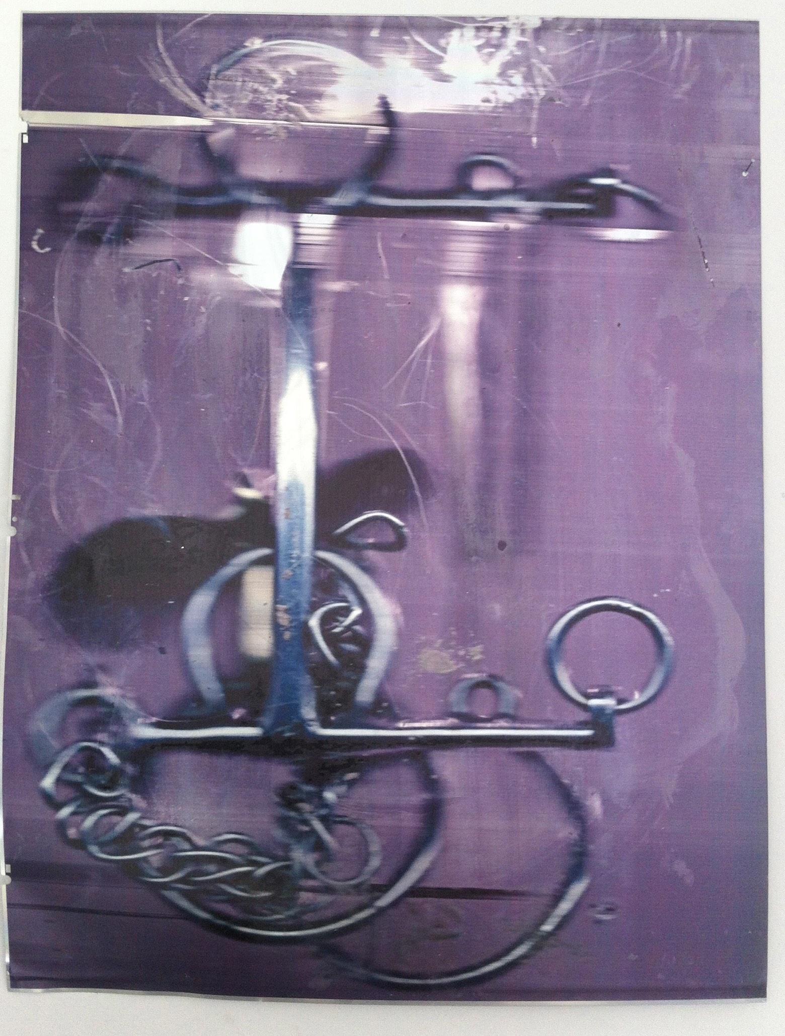 """""""Placet experiri 2013, stampa ai raggi UV su alluminio, 102.5 x 78 cm"""